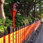 [自転車散策]京都紅葉散策のついでに