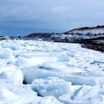 [旅行]流氷を観に行こう!