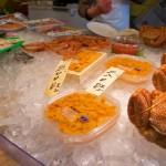 [海鮮]はこだて自由市場に行ってきたイカからゴッコにクリオネまで揃う市場