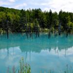 富良野の夏2015[4]青池と白髭之滝